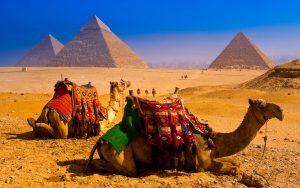 Egipto-piramides-camellos